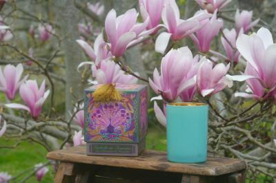 Candle LES MOISSONS Cotton Blossom